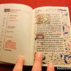 Libros de segunda mano: FACSÍMIL ÍNTEGRO DEL LIBRO DE HORAS DE DARMSTADT (S. XV), ¡MUCHAS MINIATURAS!. Lote 123279763