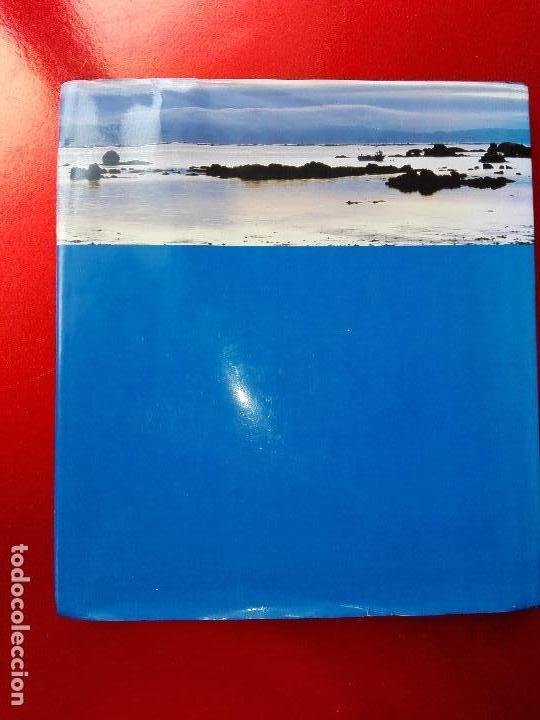 Libros de segunda mano: libro-la catastrofe del prestige-ministerio de medio ambiente-2005-288 páginas-sobrecubierta-nuevo - Foto 3 - 124568435