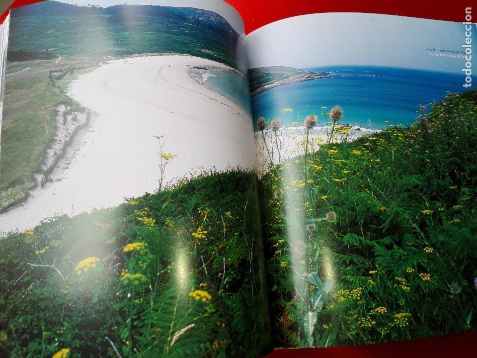 Libros de segunda mano: libro-la catastrofe del prestige-ministerio de medio ambiente-2005-288 páginas-sobrecubierta-nuevo - Foto 12 - 124568435