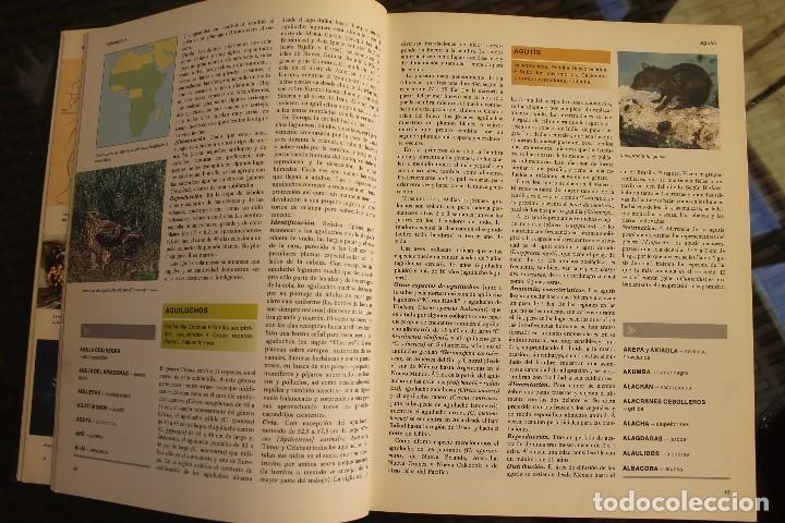 Libros de segunda mano: ANIMALES DEL MUNDO TOMOS 1, 2, 3 Y 4 - EDITADO PLAZA & JANES 1983 – ZOOLOGIA BIOLOGIA CIENCIA - Foto 8 - 124593863