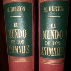 Libros de segunda mano: EL MUNDO DE LOS ANIMALES - M.BURTON – DOS TOMOS - COMPLETA. Lote 126257271