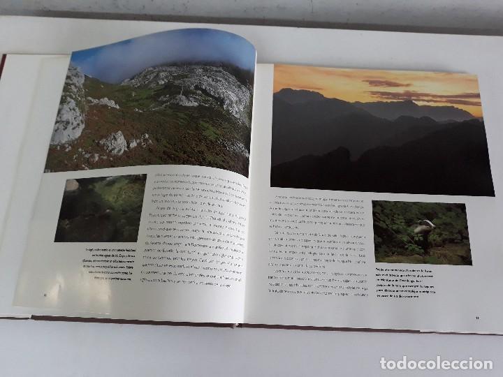 Libros de segunda mano: Parques Nacionales de España. - Foto 5 - 126580591