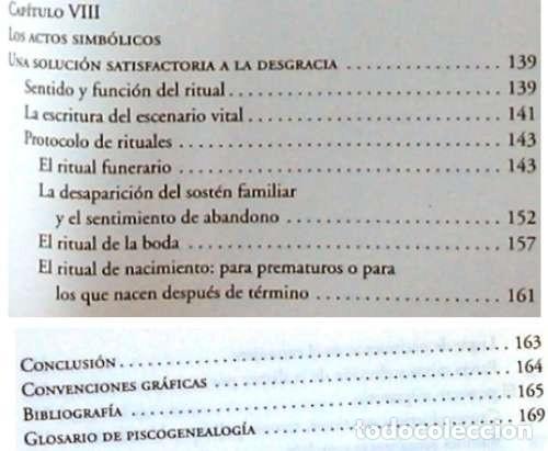 Libros de segunda mano: PSICOGENEALOGÍA APLICADA - PAOLA DEL CASTILLO - ED. OBELISCO 2013 - VER INDICE - Foto 8 - 126729663