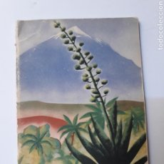 Libros de segunda mano: LIBROS CANARIAS FOLLETOS .GUIDE DE SANTA CRUZ DE TENERIFE 1934. Lote 127951319