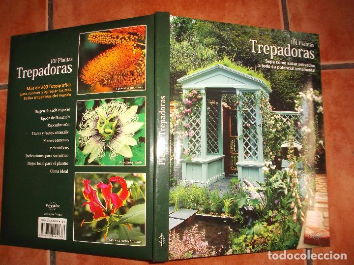 101 PLANTAS TREPADORAS,EDITORIAL EURO BEST, TODO MUY BUENAS FOTOS FOTOS ,TAPA ACOLCHADAS128 PAGINA (Libros de Segunda Mano - Ciencias, Manuales y Oficios - Otros)