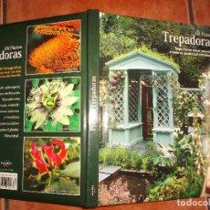Libros de segunda mano: 101 PLANTAS TREPADORAS,EDITORIAL EURO BEST, TODO MUY BUENAS FOTOS FOTOS ,TAPA ACOLCHADAS128 PAGINA . Lote 128320423