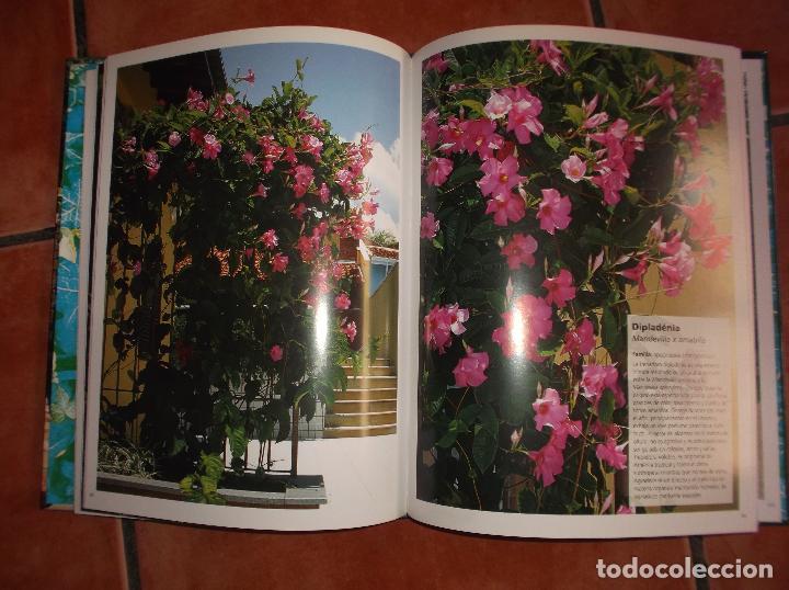 Libros de segunda mano: 101 plantas trepadoras,editorial euro best, todo muy buenas fotos fotos ,tapa acolchadas128 pagina - Foto 2 - 128320423