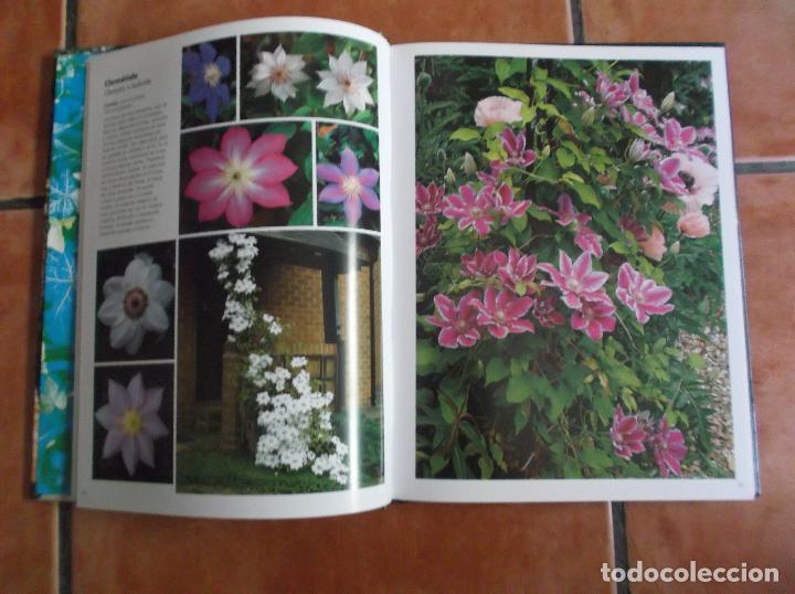 Libros de segunda mano: 101 plantas trepadoras,editorial euro best, todo muy buenas fotos fotos ,tapa acolchadas128 pagina - Foto 5 - 128320423