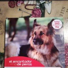 Libros de segunda mano: EL PERRO ADULTO - EL ENCANTADOR DE PERROS Nº 7 - CON DVD DEL PROGRAMA. Lote 128471227