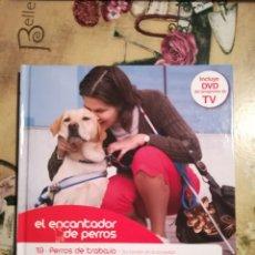 Libros de segunda mano: PERROS DE TRABAJO - EL ENCANTADOR DE PERROS Nº 19 - CON DVD DEL PROGRAMA . Lote 128473095