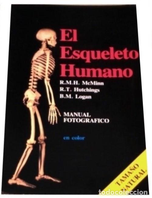 b906 - el esqueleto humano. manual fotografico. - Comprar en ...