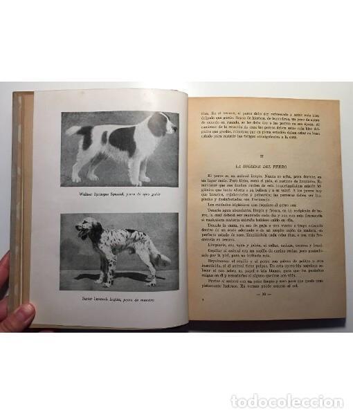 Libros de segunda mano: EL PERRO Y EL GATO - Foto 2 - 128903435