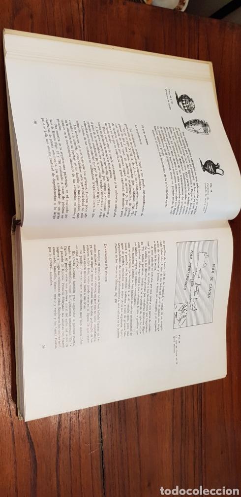 Libros de segunda mano: HISTORIA DE LOS ESTILOS - ENCICLOPEDIA CEAC DE LA DECORACION - Foto 5 - 130252820
