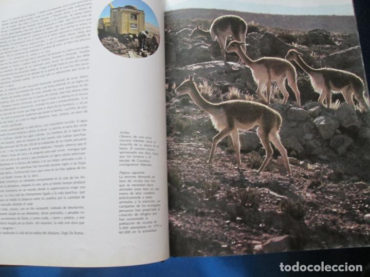 Libros de segunda mano: LIBRO-EL VIAJE DE COUSTEAU POR EL AMAZONAS-1983-240 PÁGINAS-PERFECTO ESTADO-VER FOTOS - Foto 8 - 130610810