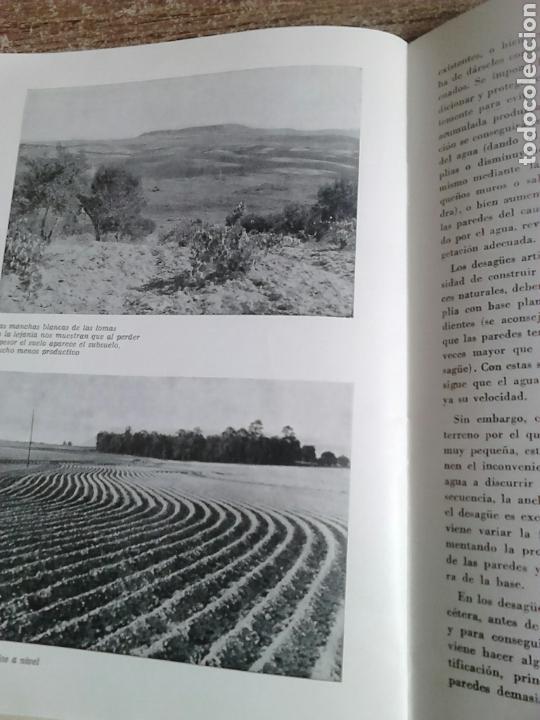 Libros de segunda mano: Libro,año 1964,defensa del suelo,temas españoles,número 450 - Foto 4 - 130628048