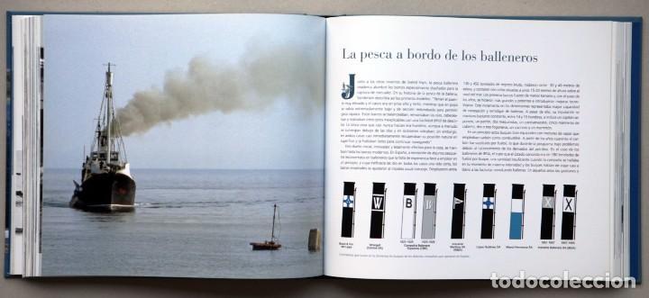 Libros de segunda mano: Chimán. La pesca ballenera moderna en la península Ibérica. Alex Aguilar. Ballena. Cachalote.Galicia - Foto 2 - 195153005