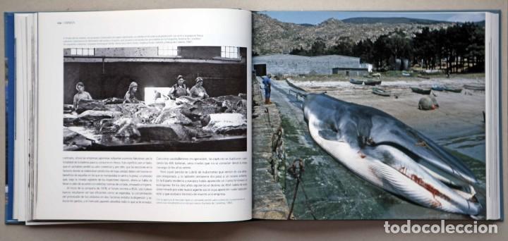 Libros de segunda mano: Chimán. La pesca ballenera moderna en la península Ibérica. Alex Aguilar. Ballena. Cachalote.Galicia - Foto 7 - 195153005