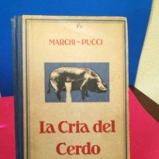Libros de segunda mano: LA CRÍA DEL CERDO - MARCHI-PUCCI - GUSTAVO GILI, 1942. Lote 133193291