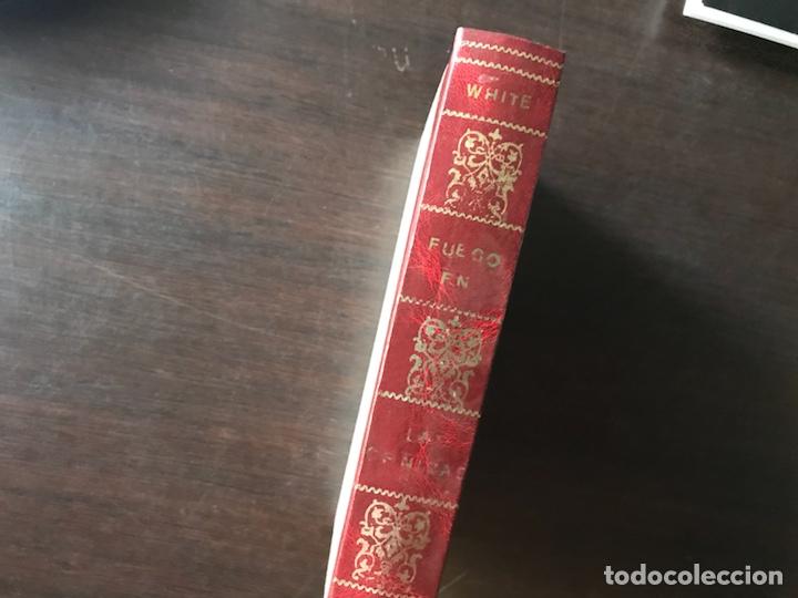 FUEGO EN LAS CENIZAS. EUROPA AL MEDIAR NUESTRO SIGLO. THEODORE H. WHITE. 1ª EDICIÓN 1.955 (Libros de Segunda Mano - Historia - Otros)