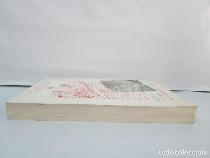 Libros de segunda mano: LAS VIAS ROMANAS DE MALAGA. CARLOS GOZALBES CRAVIOTO. COLEGIO DE INGENIEROS DE CAMINOS - Foto 5 - 133829562