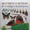 Libros de segunda mano: DE LA ORUGA A LA MARIPOSA - BIBLIOTECA VISUAL ALTEA. Lote 135058778