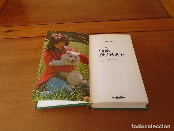 Libros de segunda mano: GUÍA DE PERROS (GINO PUGNETTI) . ED. GRIJALBO 1ª EDICIÓN 1981 - Foto 2 - 135272398