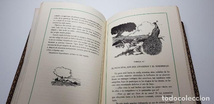 Libros de segunda mano: FABULAS ESCOGIDAS DE FLORIAN. 500 EJEMPLARES. BONITA ENCUADERNACIÓN. - Foto 5 - 135360482