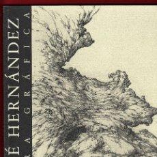 Libros de segunda mano: JOSÉ HERNÁNDEZ OBRA GRÁFICA EXPOSICIÓN VILLENA 2004 DEDICADO Y FIRMADO A MANO POR JOSÉ HERNÁNDEZ. Lote 140636962
