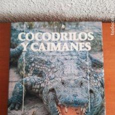 Libros de segunda mano: COCODRILOS Y CAIMANES - ROSS, GARNETT - AÑO 1992 - ED. TUSQUETS - REPTILES. Lote 142261986
