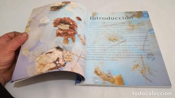 Libros de segunda mano: INTERPRETAR LOS CRISTALES-Sue Lilly - Foto 15 - 142340814