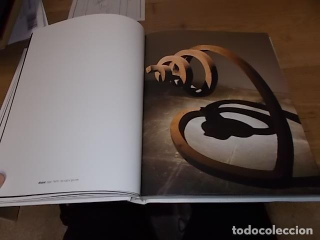 Libros de segunda mano: ANTONI FERRAGUT.RETROSPECTIVA.CASAL SOLLERIC.2009.IMPRESIONANTE EJEMPLA.VER FOTOS. HIERRO, BRONCE... - Foto 15 - 142501594