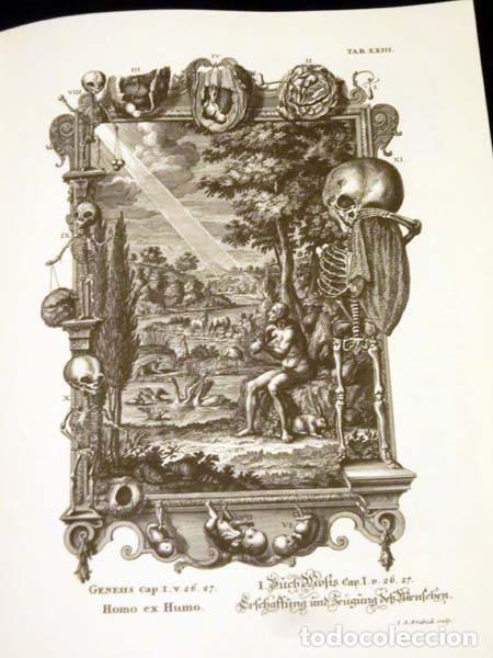 Libros de segunda mano: Física sacra (s. XVIII), con más de 100 grabados de gran formato - Foto 3 - 143355714