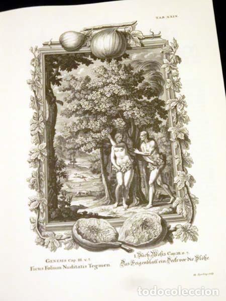 Libros de segunda mano: Física sacra (s. XVIII), con más de 100 grabados de gran formato - Foto 4 - 143355714