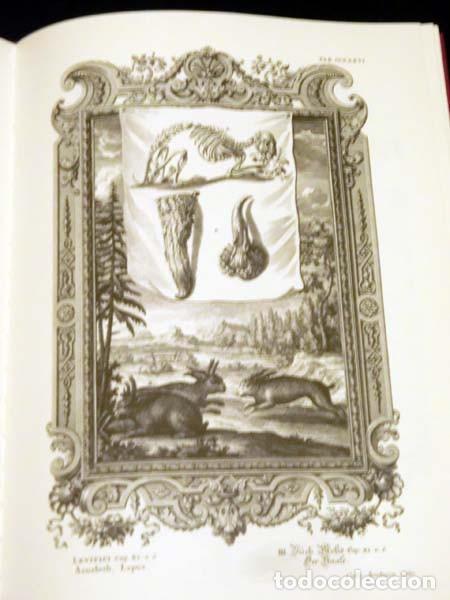 Libros de segunda mano: Física sacra (s. XVIII), con más de 100 grabados de gran formato - Foto 5 - 143355714