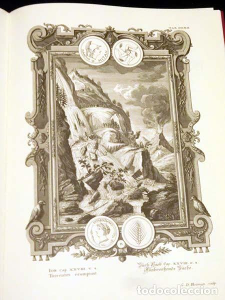 Libros de segunda mano: Física sacra (s. XVIII), con más de 100 grabados de gran formato - Foto 6 - 143355714