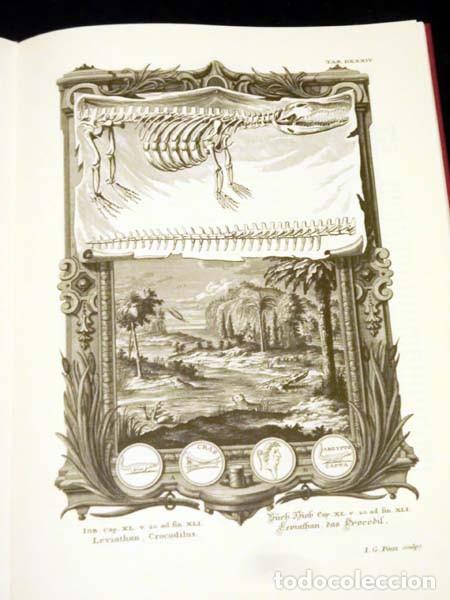 Libros de segunda mano: Física sacra (s. XVIII), con más de 100 grabados de gran formato - Foto 7 - 143355714