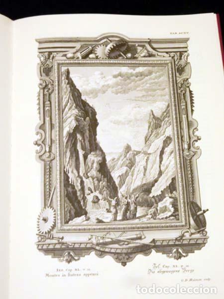 Libros de segunda mano: Física sacra (s. XVIII), con más de 100 grabados de gran formato - Foto 8 - 143355714