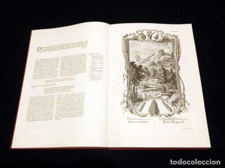 Libros de segunda mano: Física sacra (s. XVIII), con más de 100 grabados de gran formato - Foto 9 - 143355714