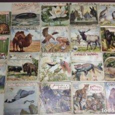 Second hand books - 1218- EL REINO ANIMAL PARA NIÑOS RAMON SOPENA EDITOR PROVENZA BARCELONA 60/70 19 EJEMPLARES - 144373030