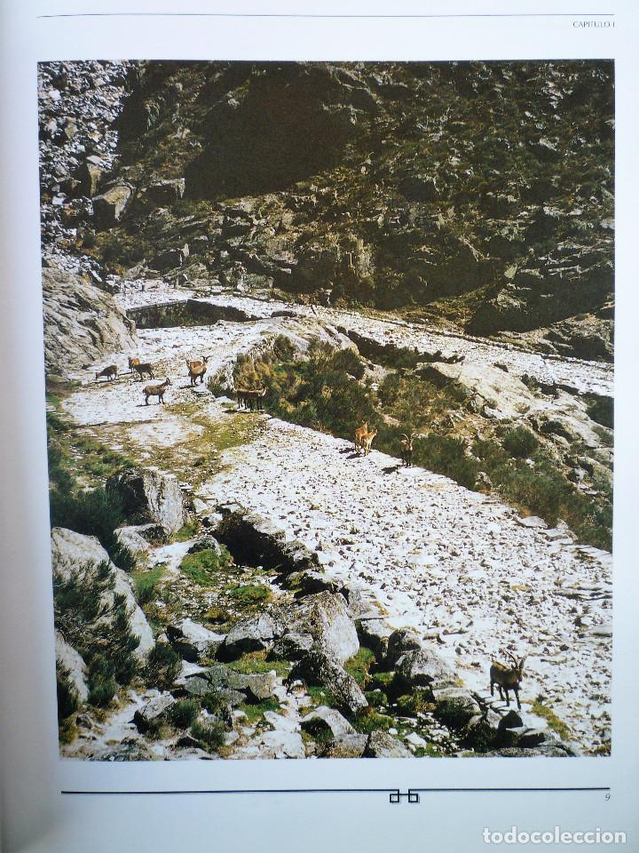 Libros de segunda mano: VIAJE POR LA HISTORIA DE NUESTROS CAMINOS - Foto 3 - 146496810
