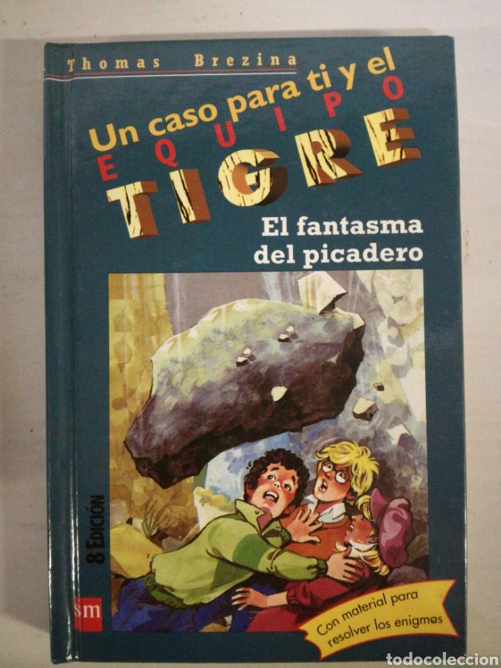UN CASO PARA TI Y EL EQUIPO TIGRE. THOMAS BREZINA (Libros de Segunda Mano - Literatura Infantil y Juvenil - Otros)