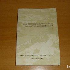 Libros de segunda mano: LAS TIERRAS CULTIVADAS DE VALGA Y PUENTECESURES 1971. Lote 147579394