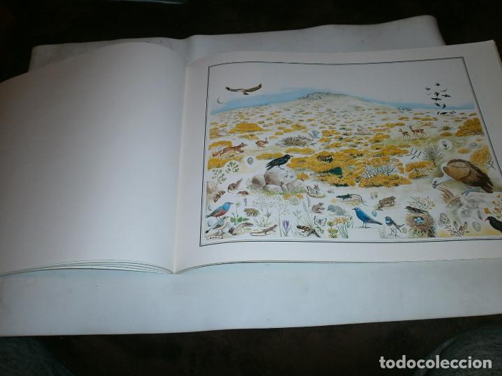 Libros de segunda mano: ECOSISTEMAS MADRILEÑOS 1997 COMUNIDAD DE MADRID GRAN FORMATO 30X42 CM - Foto 2 - 147788678