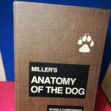 Libros de segunda mano: MILLER'S ANATOMY OF THE DOG - ANATOMÍA DEL PERRO (INGLÉS) - EVANS/CHRISTENSEN - SAUNDERS, 1992. Lote 148190860