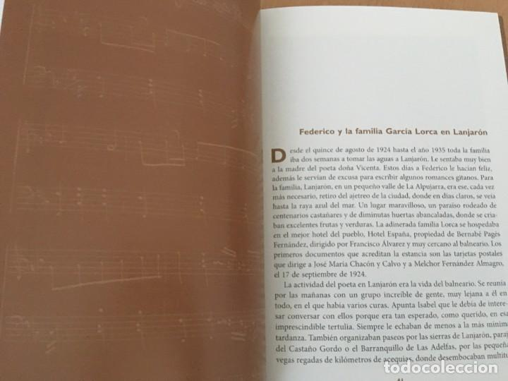 Libros de segunda mano: Falla y Lorca en la misteriosa Alpujarra – LA MAZURCA DE ÓRGIVA - NUEVO - Foto 5 - 148442962