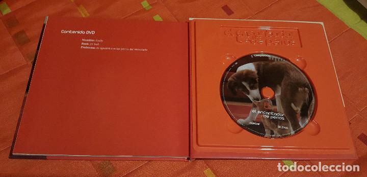 Libros de segunda mano: El encantador de Perros Nº 5- El Lenguaje del Perro Incluye DVD - Foto 3 - 149618098