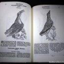 Libros de segunda mano: GESNER, LIBRO DE LAS AVES (S. XVII), FACSÍMIL. Lote 150164946