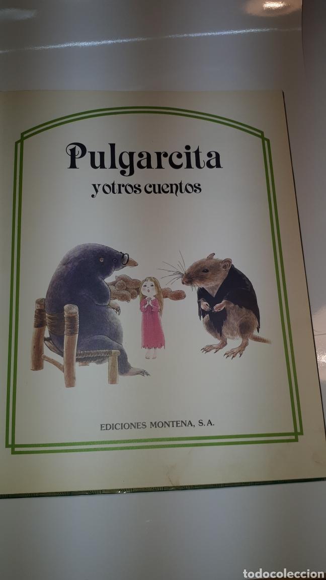 Libros de segunda mano: CUENTOS JUVENILES PULGARCITA Y OTROS CUENTOS ILUSTRADA 1983 EDICIONES MONTENA - Foto 2 - 150720158