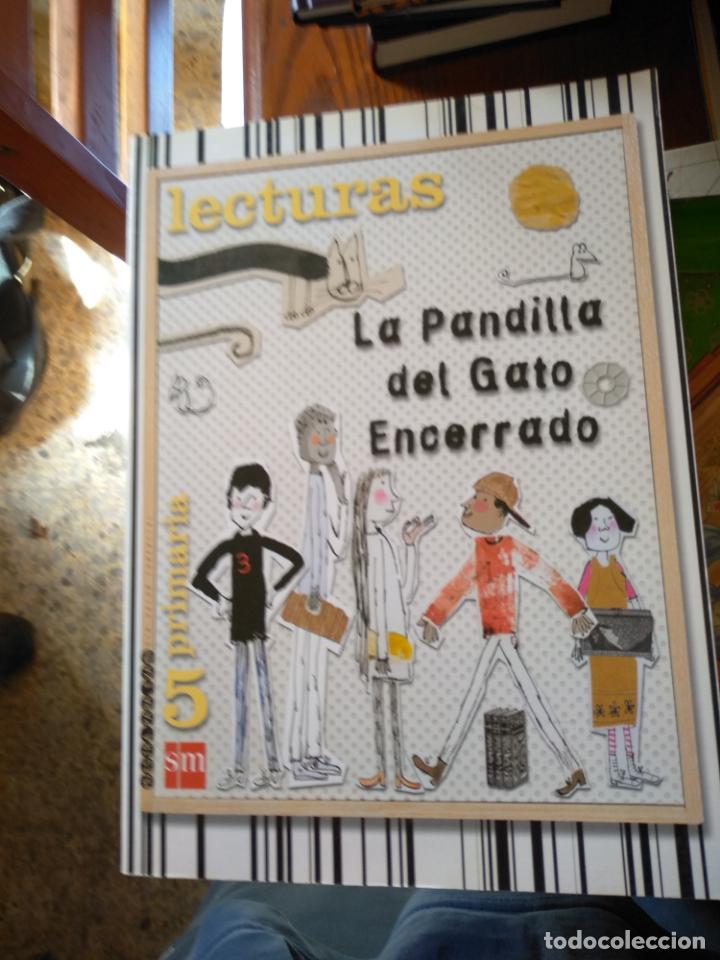 LECTURAS. LA PANDILLA DEL GATO ENCERRADO. 6° PRIMARIA. SM (Libros de Segunda Mano - Literatura Infantil y Juvenil - Otros)
