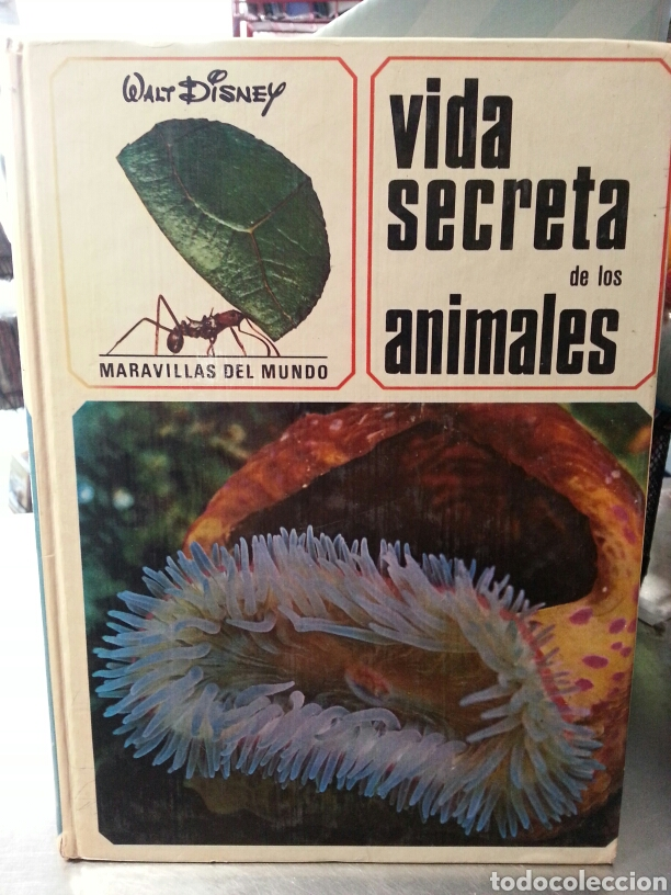 VIDA SECRETA DE LOS ANIMALES. ( MARAVILLAS DEL MUNDO). (Libros de Segunda Mano - Ciencias, Manuales y Oficios - Otros)